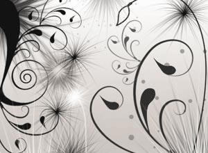 Swirls and Seeds Photoshop Brushes - Brushes para Photoshop